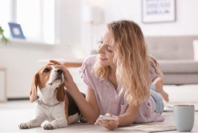 Finding A Great Home For Your Dog